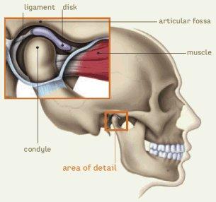 váll ligamentum javítása